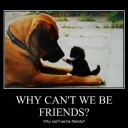 be friends