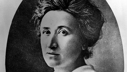 Call for Papers: Rosa Luxemburg Workshop