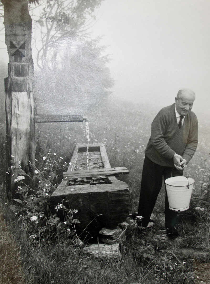 essay what is philosophy by martin heidegger This essay compares and contrasts the views of martin heidegger and john  dewey with respect to environmental philosophy and the global warming issue.