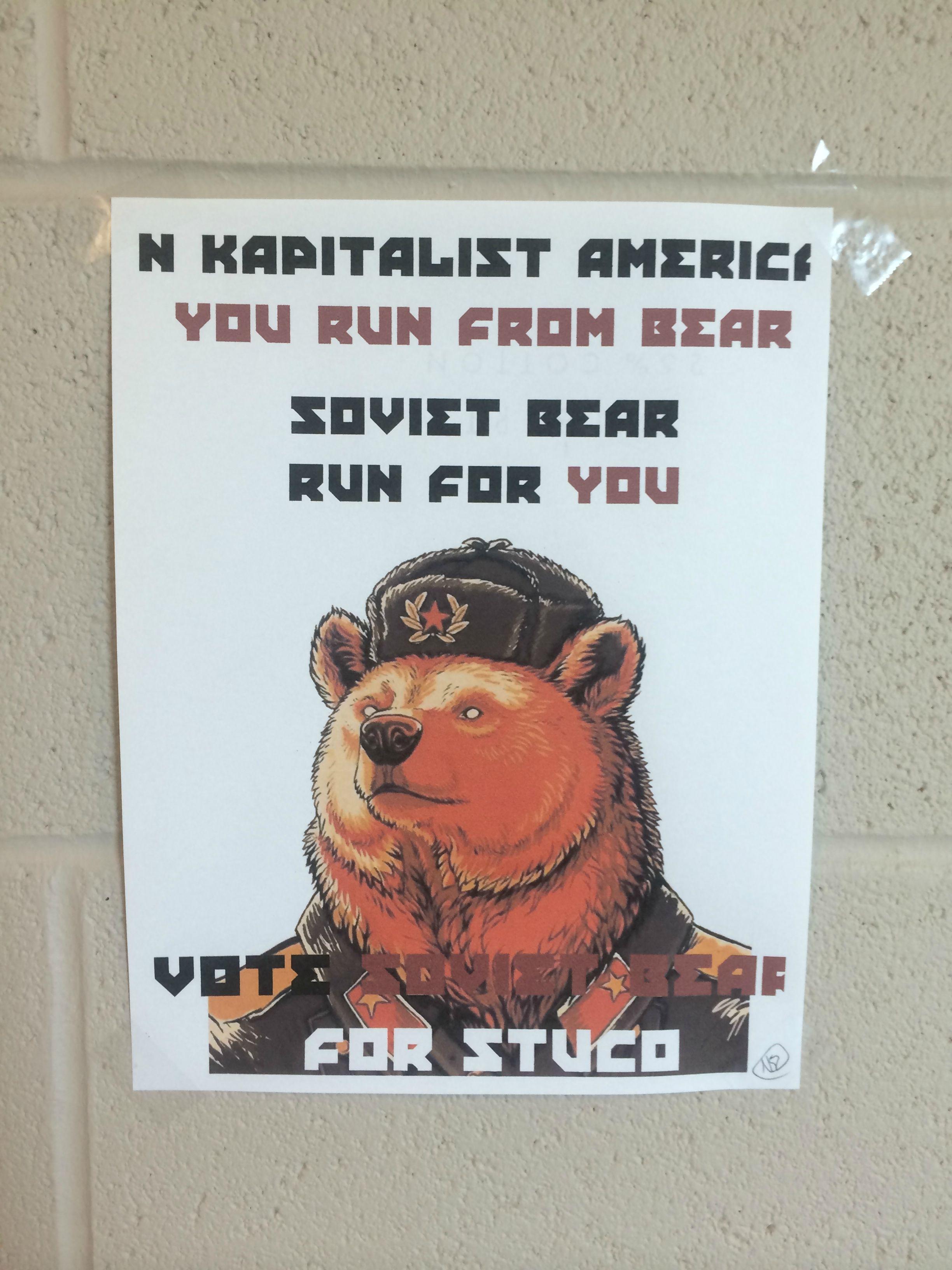 Student Council Candidate Runs as 'Soviet Bear,' Hilarity Ensues ...