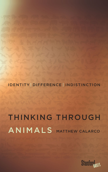 thinking through animal calarco